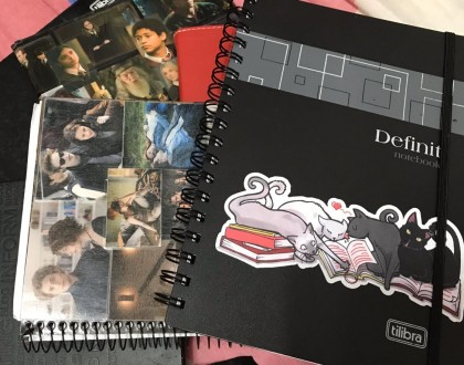 Meus cadernos de anotações