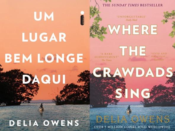 Um lugar bem longe daqui - Delia Owens (Where The Crawdads Sing)
